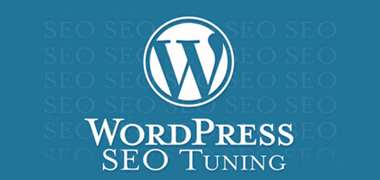 Wordpress Seo Tuning